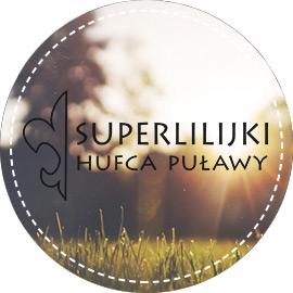 Superlilijki